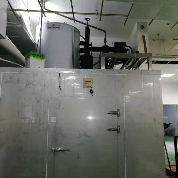 2019年唐山10T片冰机案例